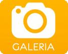 icons_foto_galeria