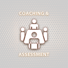 Coaching de Equipe, Executive Coaching & Assessment