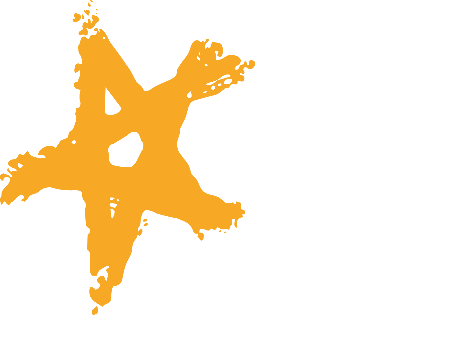 Top of Mind 2019